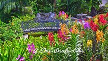 Couples Sans Souci Resort & Spa - Ocho Rios, Jamaica