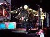 Stevie Nicks Twirls