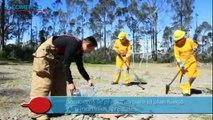 Bomberos enseñan a combatir incendios forestales