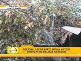 Tornado destroys 25 houses in Sultan Kudarat