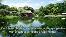 Japan Travel: Hikone Castle as Borrowed Scenery Genkyuen Garden Japan Trip Hikone, Shiga, Japan