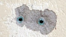 Patching Holes In Walls - How to fix or patch holes in rendered walls.