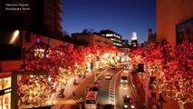 TOKYO Christmas 東京クリスマスイルミネーション Tokyo's Best Streets Christmas Lights 東京観光 六本木 丸の内 表参道 ディスカバーニッポン