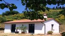 Rustico/Casale in Vendita da Privato - Via di Val d'Orlo 32, Castelfiorentino