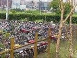 Patio Detran SP Motos Presas Patio lotado e motos apodrecendo