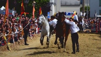 Fête Médiévale Poissy 2015 (spectacle de voltige)