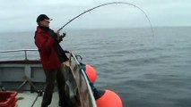 Galway Fishing. Pollock fishing with Max Couque in Galway Bay, Connemara,  Deep sea fishing Ireland