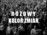 Komunikat Ministerstwa Prawdy (nr 282) tylko na Fronda.pl: Różowy kolor zmian