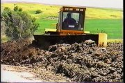 Windrow composting of Beef Manure