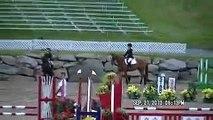 Relais Chien-Cheval-Poney..Au Jeux  Equestre Du Québec à Bromont...