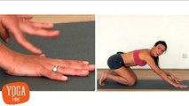Yoga - Posture du Chien tête en bas (Adho Mukha Svanasana)