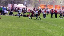 WolfPack Spring 2015 Highlights