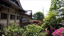 本龍院(待乳山聖天) 庭園 浅草 东京/Honryu-In Temple Garden Asakusa Tokyo/ 아사쿠사 도쿄