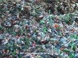 Borski osnovci u poseti fabrici za reciklažu pet ambalaže, 04. jun 2015. (RTV Bor)