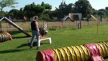 Christine et Luna, agility loisir, mai 2015