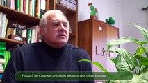 Manifestación Convocatoria - David Bramwell - Aristides Moreno