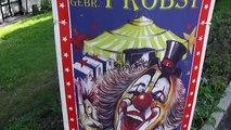 "Circus / Zirkus ""Probst""  in Waldenbuch....Kamele + Esel +Pferde / camels + donkeys +horses"
