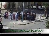 intifadamay rasd western sahara intifada