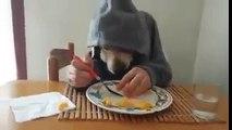 Yemek yiyen köpek