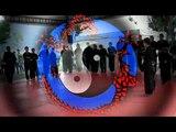 Scuola di kung fu Lao Long Dao le Aquile Di Brescia Arti Marziali Acrobatica Parkour