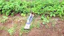 système d'arrosage automatique jardin Potagé autonome solaire 12v eau gratuit fait maison