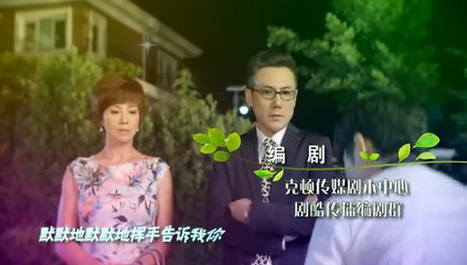 閃亮茗天 第29集 Tea Love Ep29