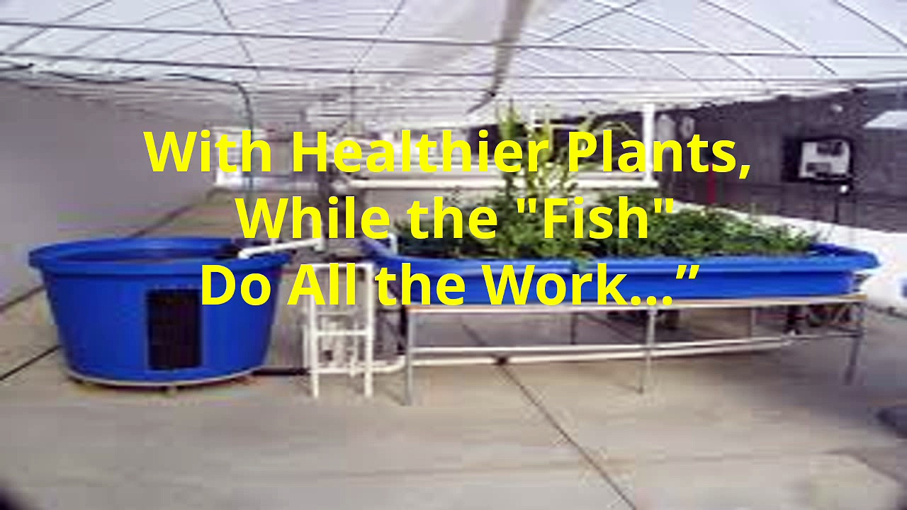 Proven aquaponics systems design