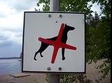 Pro Suomi Seppo Lehto: Koirilta pääsy kielletty uimarannalle 11. 7.2009 - Se on järkipolitiikkaa