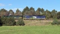 Grain Train near East Maitland - Pacific National Diesel Freight Trains of Australia