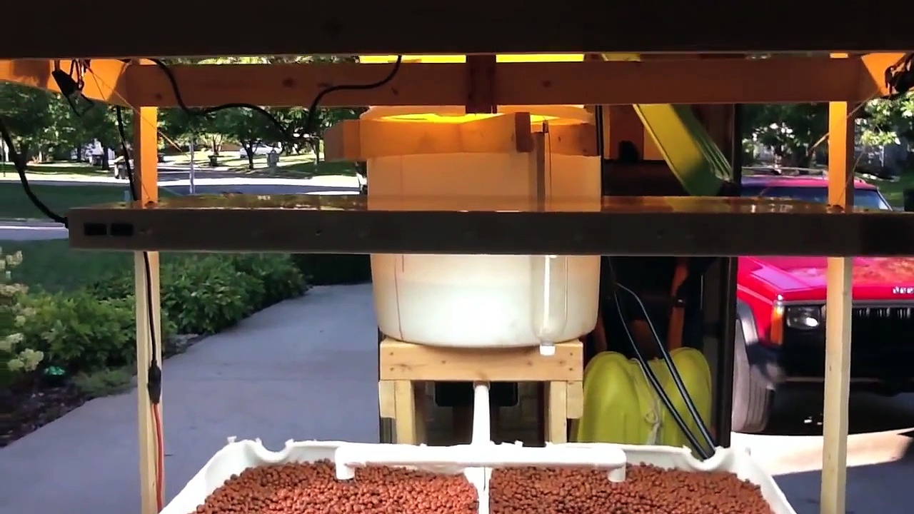 Home Aquaponics – Travis Hughey's Barrel-ponics System