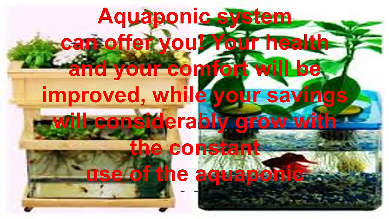 DIY aquaponics made easy quide