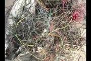 COPPER WIRE RECYCLING MACHINE - linia do recyklingu kabli - WR-MACHINES