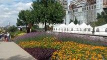 Canada, Quebec │Voyage Tour Du Monde ► Montreal  Mosaiculture HD