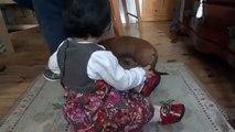 Yaramaz Köpek Bebegi Öpmek Istiyor