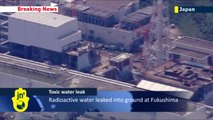 Japanese nuclear plant leaking radioactive water: at least 300 tonnes of water leaked from Fukushima