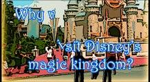 Disney Culture Jamming