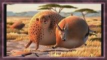Cartoon film - Ridiculous Inflatable Animals - Leopards, Crocodiles, Zebras, etc