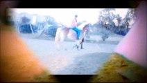 Les chevaux  et moi une passion ..  mais pour l'instant q'un rêve celui de faire de l'équitation...... :/