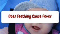 Can Teething Cause Fever - Cause of Fever in Infants