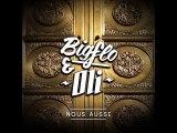 Bigflo & Oli - C'est Pas Du Rap ( 2o15 )