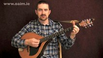 Beginner Irish Bouzouki Lesson from the Online Academy of Irish Music with Billy Mag Fhloinn