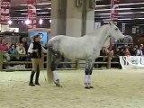 Salon du cheval Paris 2006 - Démonstration éthologie - Magdalena Pommier