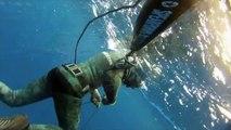 Spearfishing in the south atlantic - Ascension Island Trip HD - deepbluesub.com