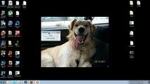 EPIC TERRARIA NARUTO MOD SASKUE PAWNAGE!!!! - video dailymotion