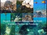 Balisage écologique respectant l'intégrité des habitats marins