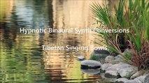 Hypnotic Soundscapes -- Tibetan Singing Bowls 1