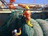 Chalutier en pêche