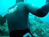 Coletãnea de videos Pesca sub 5