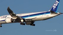 BOEING 787-8 / 787-9 OF 10 AIRLINES - ANA, JAL, UAL, AMX, AIC, QTR, JAE, ACA, THA, ANZ