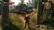 Witcher 3: Wild Hunt - Bestiary and character profiles